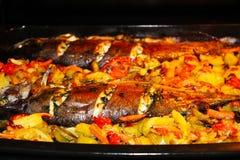 在烤箱烘烤的鳟鱼 库存照片