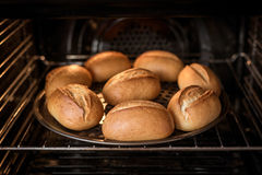 在烤箱的家庭焙制的面包 免版税库存照片