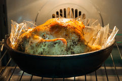 在烤箱的开胃烘烤火鸡 免版税库存照片