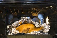 在烤箱的水多的金黄鸡 免版税图库摄影