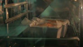 在烤箱的烘烤杯形蛋糕 从烤箱的外面看法 股票录像