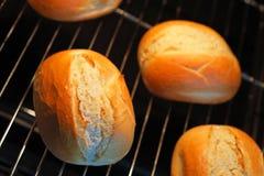 在烤箱的Rrolls 免版税图库摄影