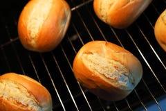 在烤箱的Rrolls 库存照片