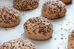 在烤箱盘子的未加工的整粒小圆面包在烘烤前 库存图片