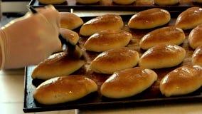 在烤箱盘子的被烘烤的小圆面包 股票录像
