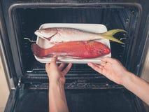 在烤箱被投入的异乎寻常的鱼 库存照片