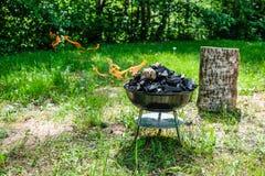 在烤肉木炭格栅的火 烤在weber类型s的食物 库存图片