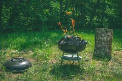 在烤肉木炭格栅的火 烤在weber类型s的食物 免版税库存照片