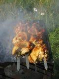 在烤肉的开胃可口油煎的肉烤户外 库存图片