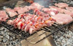 在烤肉的开胃肉 库存照片