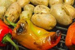 在烤肉的蔬菜 库存照片