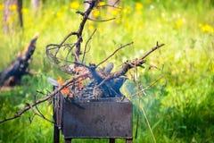 在烤肉的闭合的营火在火和黑木头森林背景中  在明亮的火的深灰,黑水力在我里面 免版税库存照片