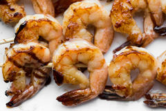 在烤肉的鲜美加香料的虾串 免版税图库摄影