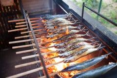 在烤肉的鲭鱼 免版税库存照片
