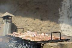 在烤肉的鸡肉 图库摄影