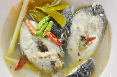 在热和辣汤姆汤的煮沸的蛇头鱼在碗 库存图片