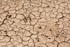 在热天气的土壤裂缝 图库摄影