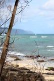 在热带北部岸奥阿胡岛,夏威夷的乌龟海滩 免版税库存照片