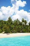 在热带完善的海滩的棕榈树 免版税图库摄影