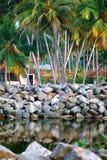 在热带手段的大平房街道在死水附近 免版税库存图片