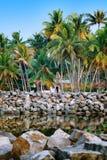 在热带手段的大平房街道在死水附近 免版税库存照片