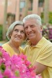 在热带手段的夫妇 免版税库存照片
