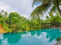 在热带手段的无限水池在亚洲有对密林的看法在假日移动和旅游业概念 免版税库存照片