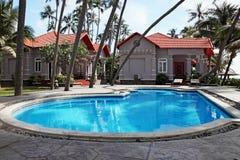 在热带手段的游泳池 图库摄影