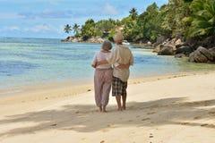 在热带手段的年长夫妇休息 免版税库存照片