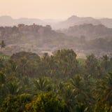 在热带棕榈树森林上的美妙的日出 免版税库存图片