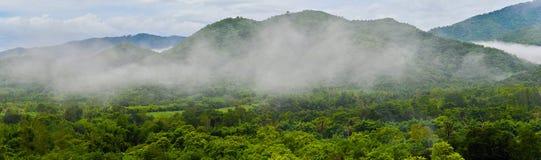 在热带森林的早晨全景山图象 免版税图库摄影