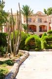 在热带植物和房子中的路 免版税图库摄影