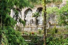 在热带植被之中的寺庙墙壁 免版税库存图片