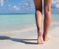 在热带沙子海滩的性感的腿。走的女性脚。 库存图片