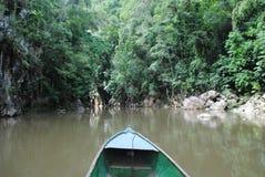 在热带河的小船 免版税库存图片