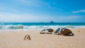 在热带海岛、两个婚戒和太阳镜上的蜜月 图库摄影