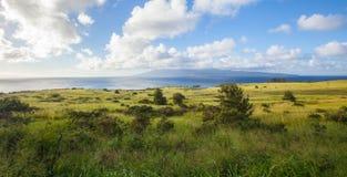 在热带海岛上的国家风景 库存照片
