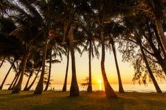 在热带海岛上的壮观的日落 酸值张 图库摄影