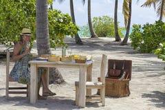 在热带海岛设置的野餐午餐 库存照片