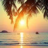 在热带海岸旅行的美好的日落 库存照片