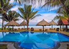 在热带海岸棕榈滩和水池 免版税图库摄影