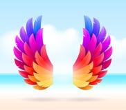 在热带海岸的五颜六色的翼 库存图片