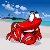 在热带海岸的动画片滑稽的愉快的螃蟹 库存图片