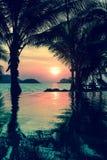 在热带海岸自然的美妙的日落 库存照片