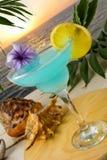 在热带海日落背景的蓝色鸡尾酒 库存图片