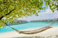 在热带海滩的吊床与背景的水平房 免版税库存照片