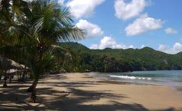 在热带海滩的好日子 库存图片