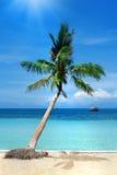 在热带海滩的掌上型计算机 免版税库存照片