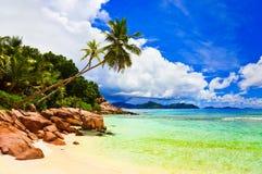 在热带海滩的掌上型计算机 库存照片