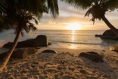 在热带海滩的日落与构筑看法的棕榈树 免版税图库摄影